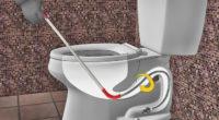 Comment garder votre canalisation de toilette propre